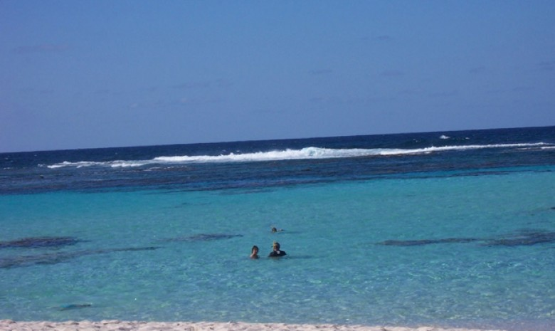 Enjoy A Beach Swim