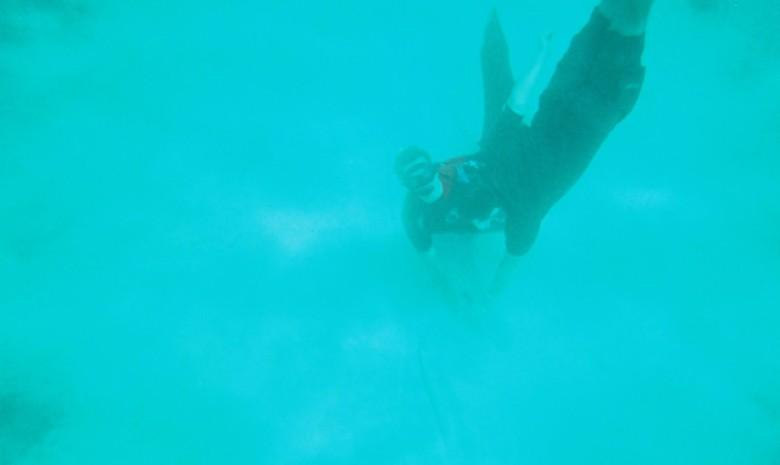 Swimming On The Ocean Floor