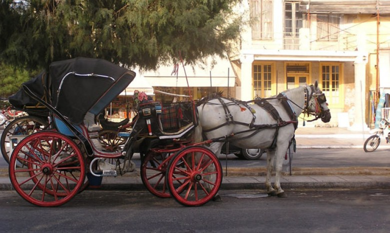 Any One Up For A Carriage Ride?
